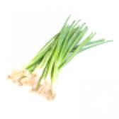 Цибуля зелена - калорійність і властивості. користь і шкода зеленого лука