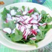 Як приготувати салат з руколи і редиски - рецепт