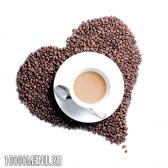 Кава з молоком - склад і калорійність. користь і шкода кави з молоком