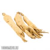 Корінь женьшеню - склад і властивості. користь кореня женьшеню