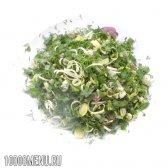 Маринована зелень