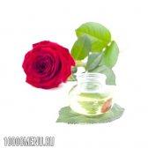 Масло троянди - властивості і склад. користь масла троянди