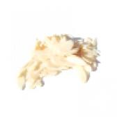 Мигдальні пелюстки
