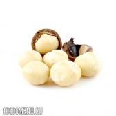 Горіх макадамія. властивості і користь горіха макадамія