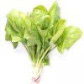 Шпинат - калорійність і властивості. користь і шкода шпинату
