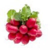 Редис - калорійність і властивості. користь і шкода редиски