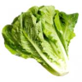 Салат романо. користь салату романо