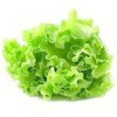 Салат - калорійність і властивості. користь і шкода салату