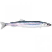 Риба мойва - калорійність і властивості. користь і шкода мойви