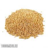 Сорго зернове