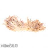 Сушені щупальця кальмарів