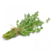 Чебрець (чебрець). властивості і користь чебрецю